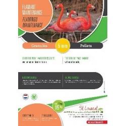Aliment Flamant - St Laurent