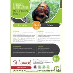 ST LAURENT - Petit Primate Nouveau Monde