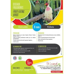 Aliment oiseaux frugivores