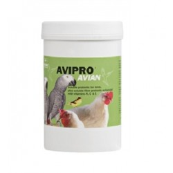 Probiotique Avipro Avian