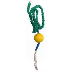 Balle élastique - mammifères marins