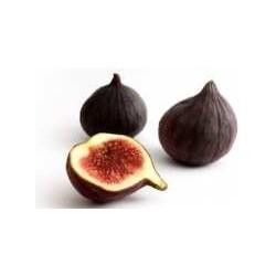 Purple figs