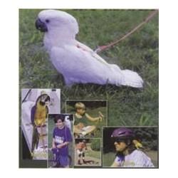 Harnais pour oiseaux