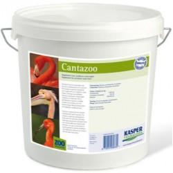 Cantazoo