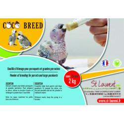 Coco Breed - Perroquets