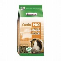 Cavia Cobaye Pro