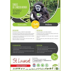 ST LAURENT - Extrudés Primate Ancien Monde