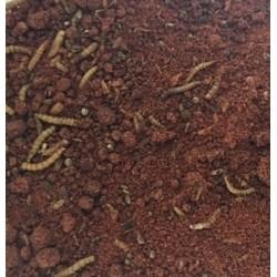 Pâtée insectivore