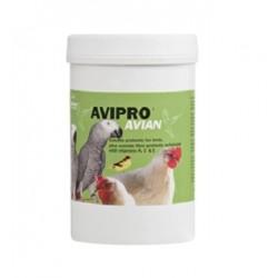 Probiótico Avipro Avian