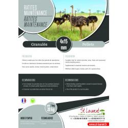 Ratites Entretien - St Laurent