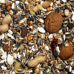 Exotic Nut Mix