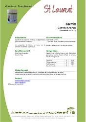 FT Carmix
